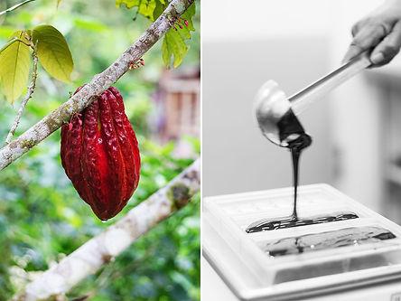 Chocolaterie - Notre démarche 4.jpg