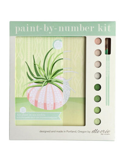 Paint by Numbers Kit - Air Plant in Sea Urchin