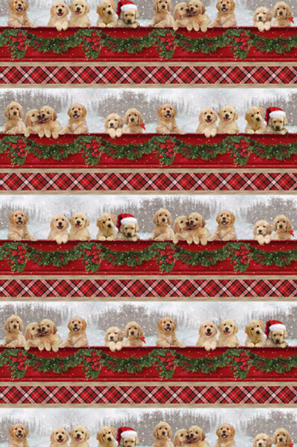 Northcott Fabric Santa's Helpers DP23538-24