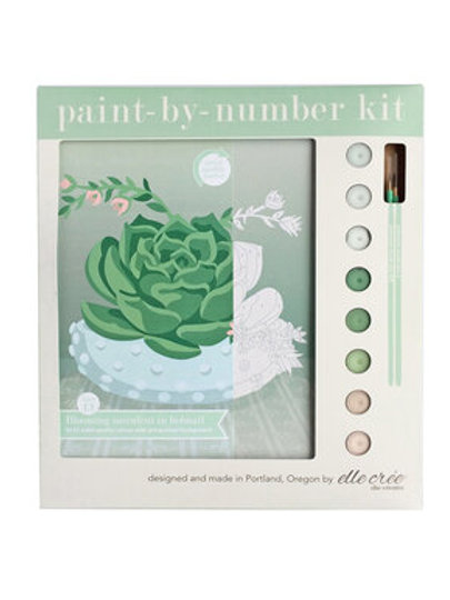 Paint by Numbers Kit -Succulent in Bowl