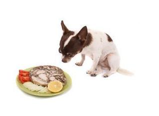Alimentos prohibidos para perros