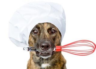 Recetas caseras para perros (I): Pollo con arroz