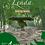 Thumbnail: Lenda Lamb (cordero)