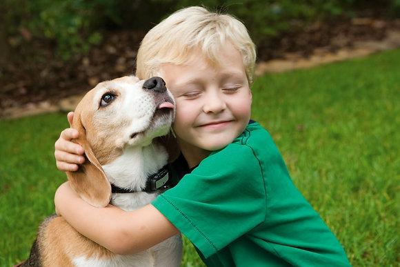 """Taller para niños y padres: """"Enseña a tu perro...¡a ser un buen perro!"""