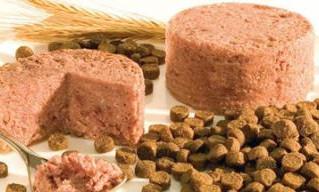 Los mejores alimentos balanceados para perros