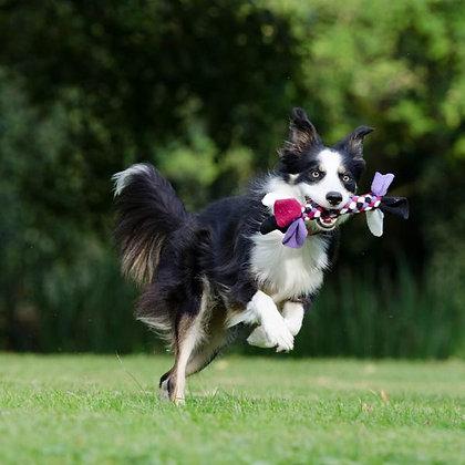 TUPPER-DOG: Taller formativo en juegos y relaciones con tu perro