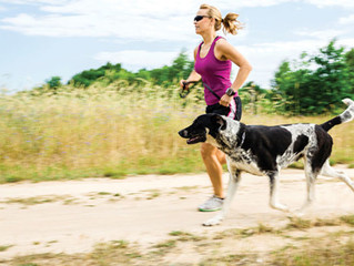 Algunas buenas maneras de incluir a tu perro en tus entrenamientos fitness