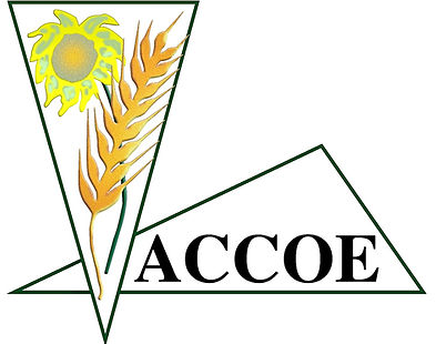 ACCOE logo Alta resolucion_edited.jpg
