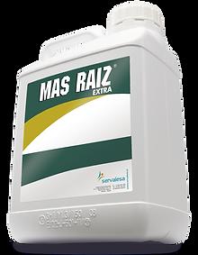 Mas-Raiz-Extra.png