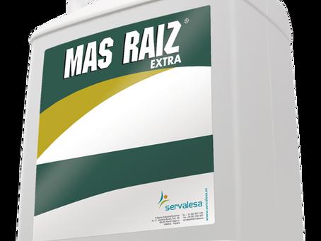 Más Raíz Extra, gama Agro Valladolid de bioestimulantes