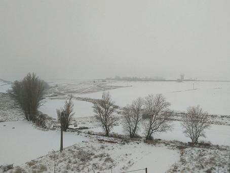 La nieve ralentiza la actividad en un campo que se prepara para el abonado y los herbicidas