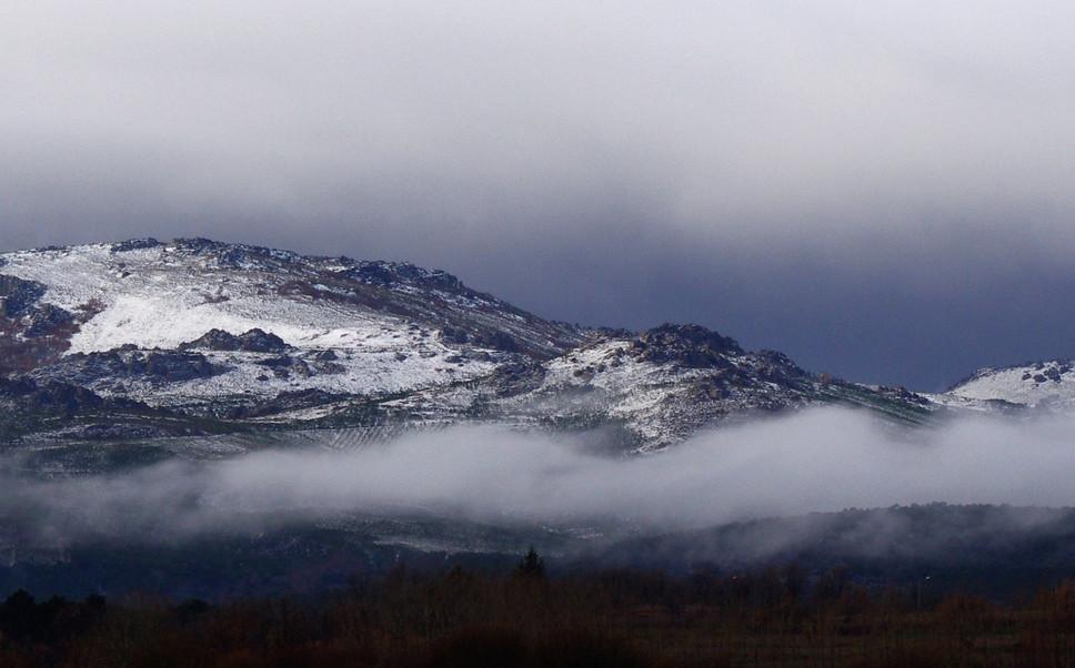 Tabuyo del Monte 12