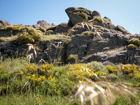 Patrimonio geológico