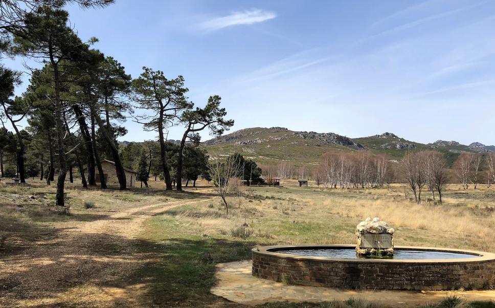 Tabuyo del Monte 10