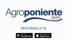Hispatec crea una app para el agricultor en Agroponiente