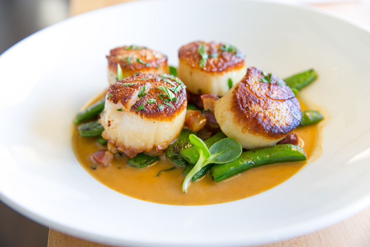 Diver scallops for website