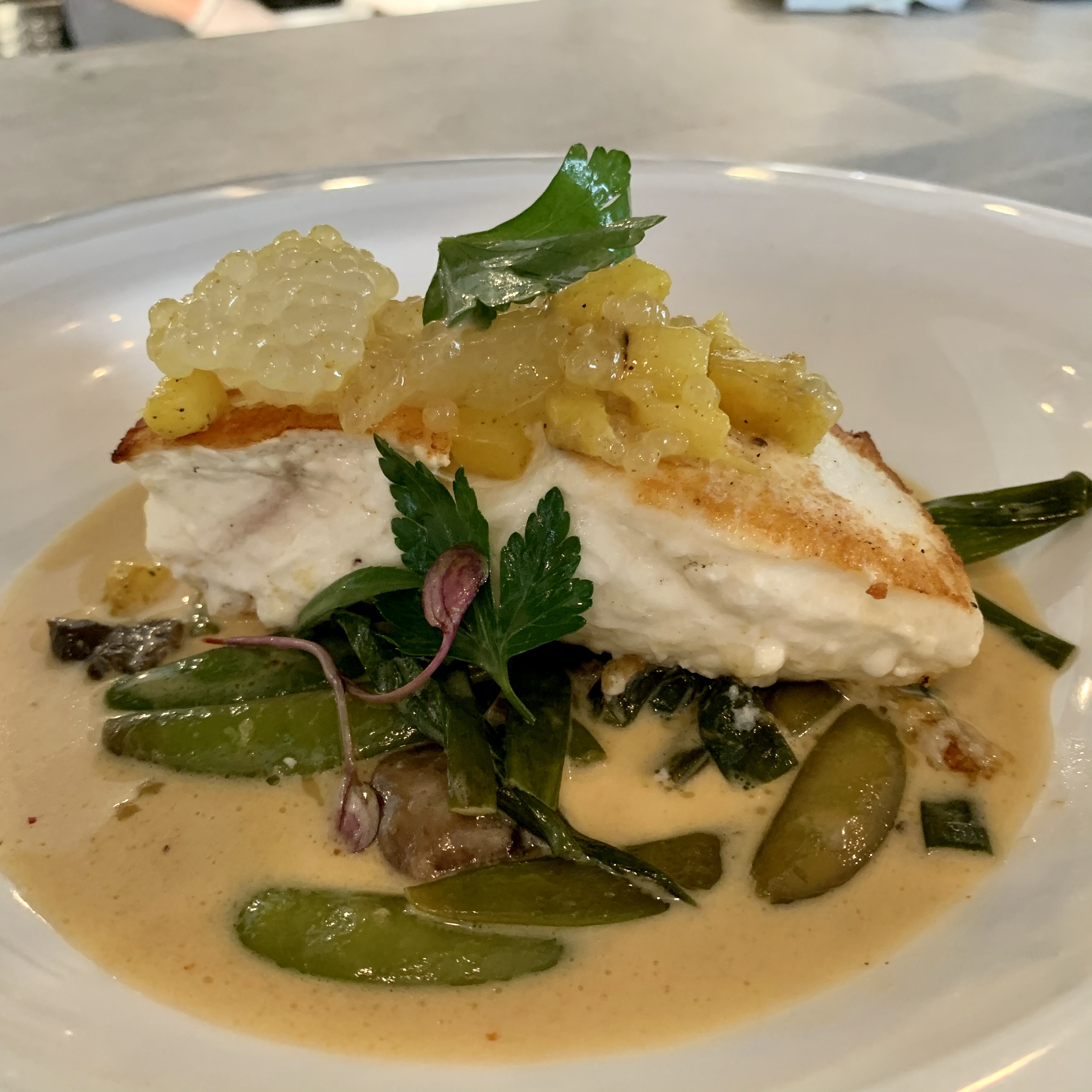 Halibut Original