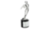 Black Diamond Video Production and Editing Santa Barbara is the proud recipient of over 20 National Telly Awards!