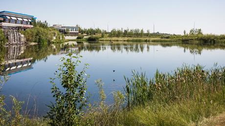 Biofertilizers Improve Water Quality