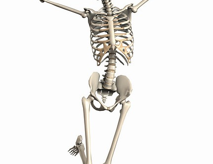 Fitness for Older Adults: part two - Skeletal Health