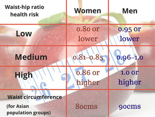 Apples and Pears: explaining waist-hip ratio and why you need to check yours.
