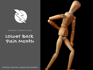 Lower Back Pain Month!