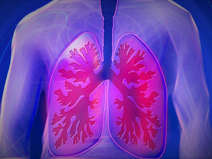 Fitness for Older Adults: part five, The Respiratory System