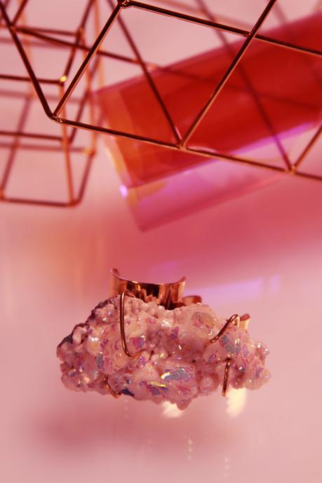 PRISMS_LXRPhoto_collection_10c copy.jpg