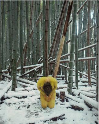 Action for Adashino Nenbutsu ji #1 - Japan 2012