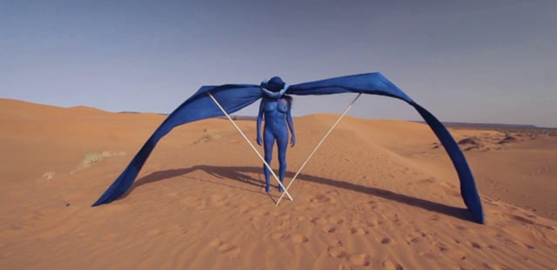 Nomad - Sahara 2014 - Video of performance - HD Video 5:50 - Edition of 5 + 2EA