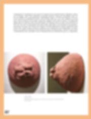_Pages(pantone)_FLORIAN_GAITÉ_Page_18.jp