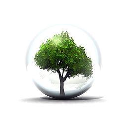 ambiente.jpg