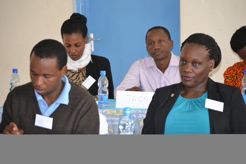 Dr. Isabella Epiu WHEMATI Training Nairobi 2015