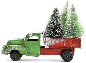 Christmas Tree Delivery to Bristol and Bath