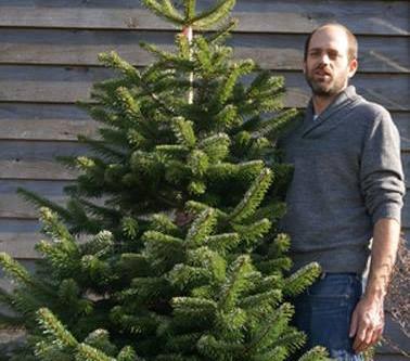 Tree Care Hints
