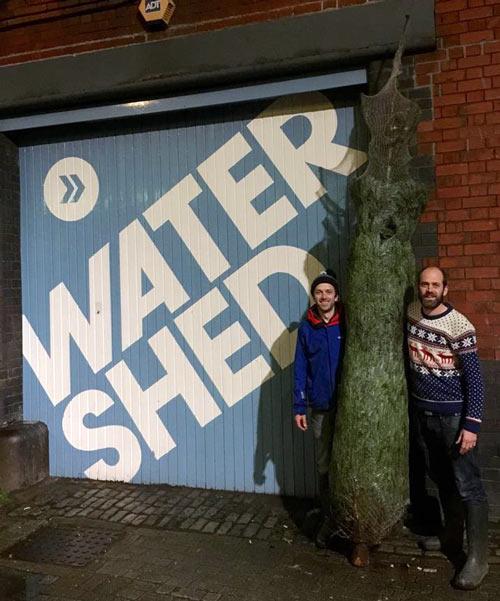 watershed-christmas-tree