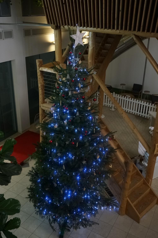 ovo energy Christmas tree
