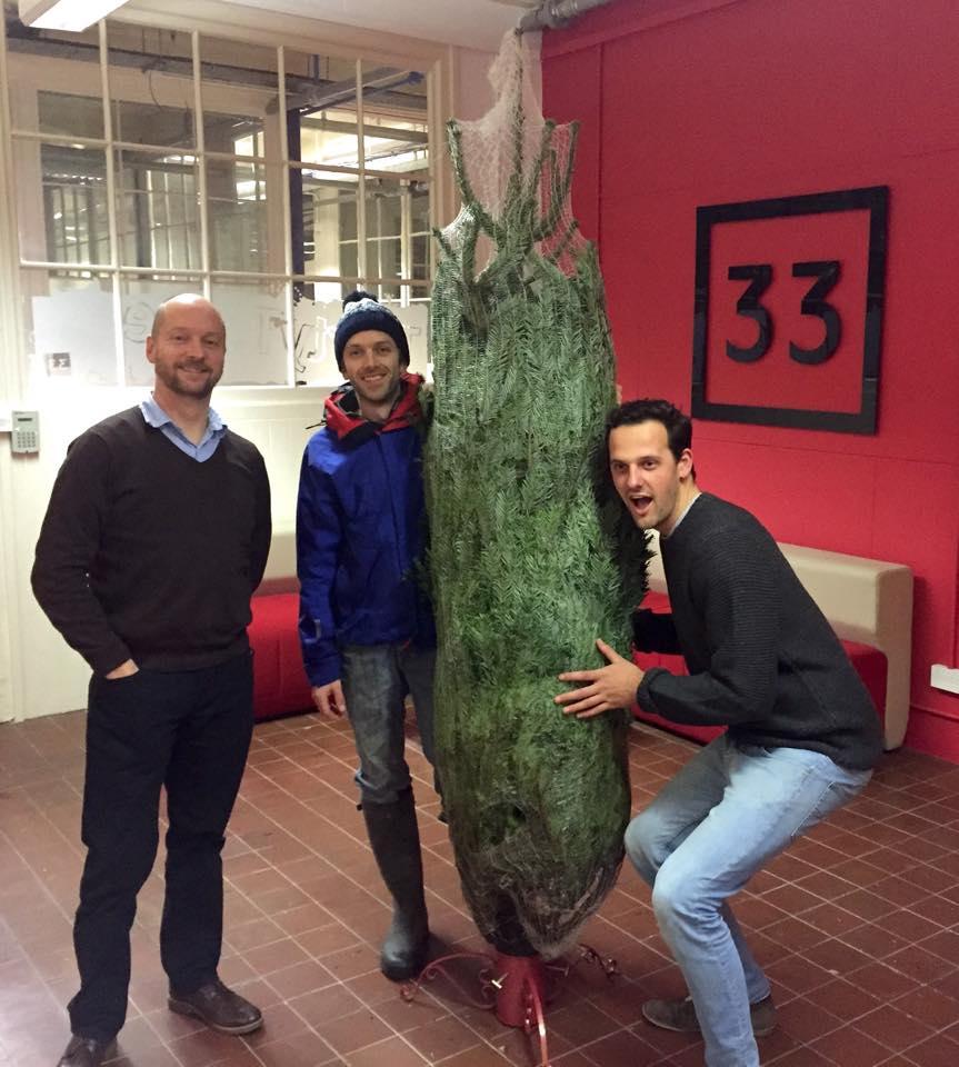 Christmas trees online