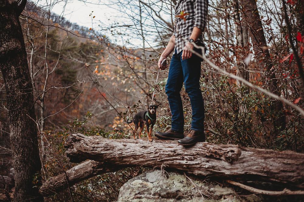 Man with dog exploring