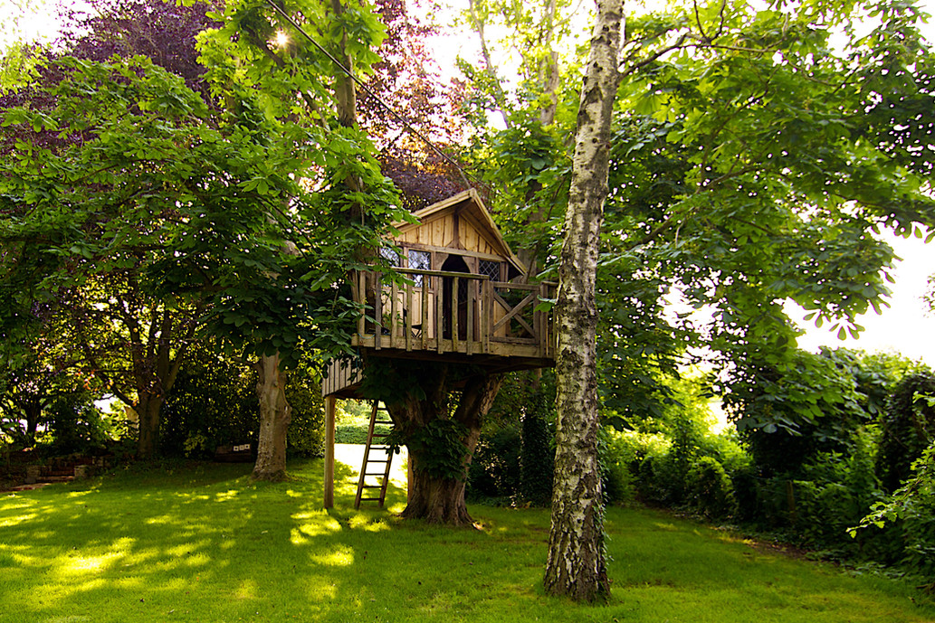Tree House hidden