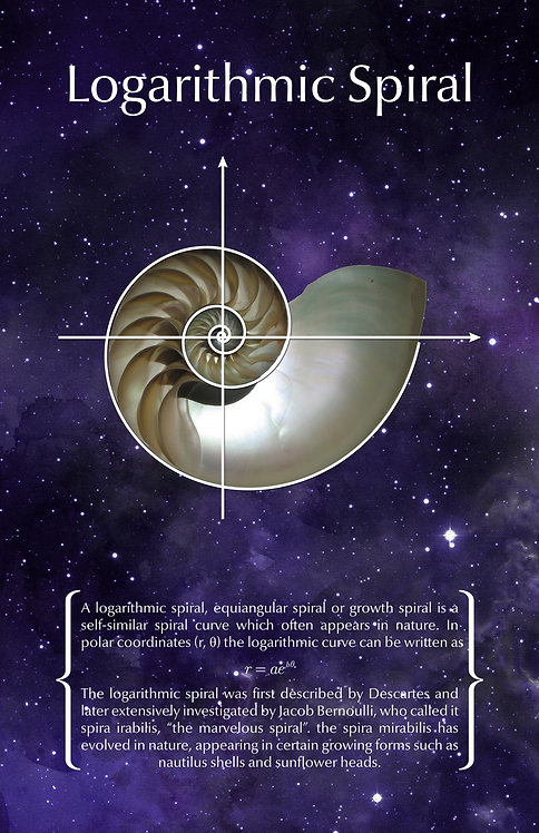 Logarithmic Spiral