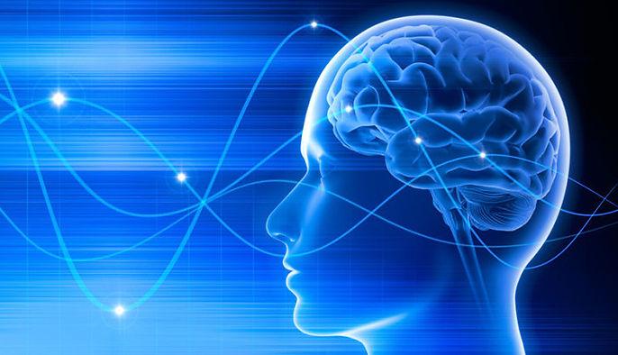 Mind Brain 2.jpg