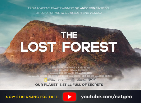 'The Lost Forest' documentary release