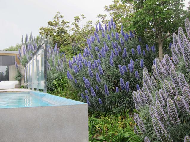 Margaret Phillips Garden 3.jpg
