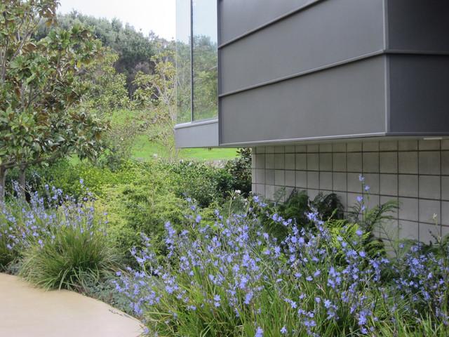 Margaret Phillips Garden 5.jpg