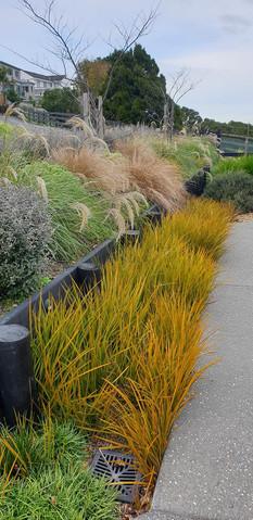 Jane-Mcguffie-garden-2.jpg