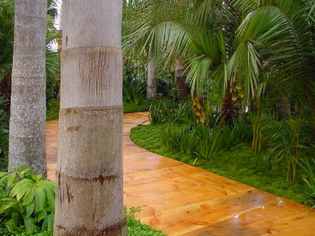 Margaret Phillips Garden 7.jpg