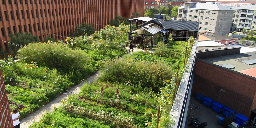 Carl Pickens Lecture: Urban Agriculture