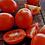 Thumbnail: DATTERINO TOMATID, Itaalia (1kg)