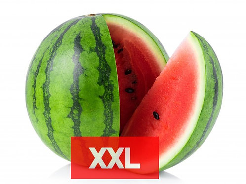 XXL - MAGUS ARBUUS, Itaalia (10kg minimum)